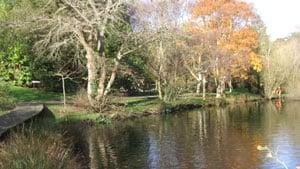 St Johns Arboretum